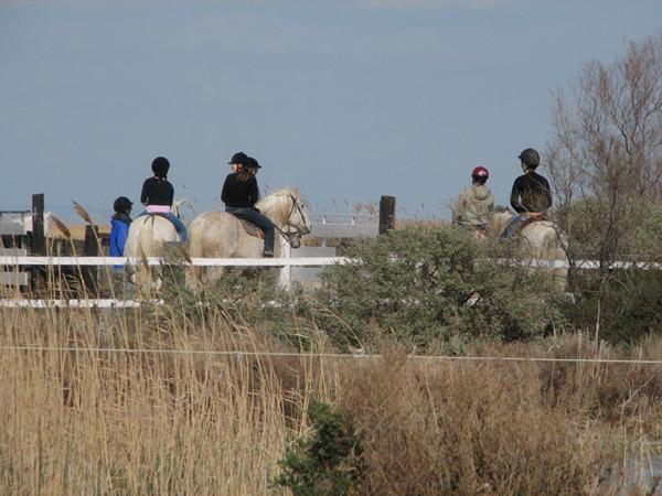 Meisjes op ponies en paarden