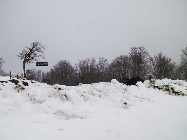 sneeuwlandschap met bordje Col du Perthus