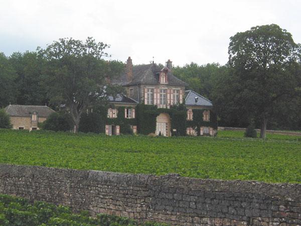 Grote villa in wijngaard met oud muurtje ervoor