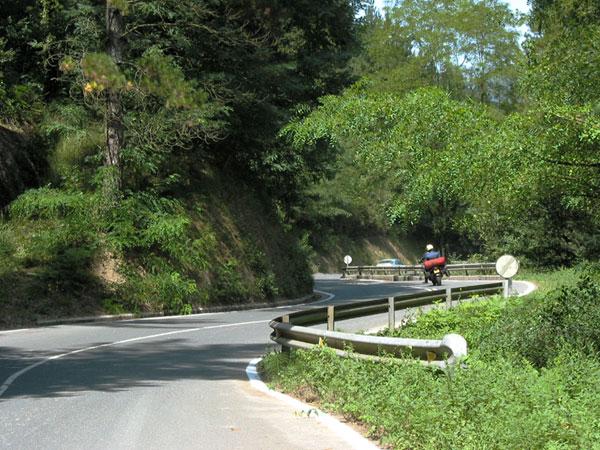 Motor over bochtig weggetje door het bos