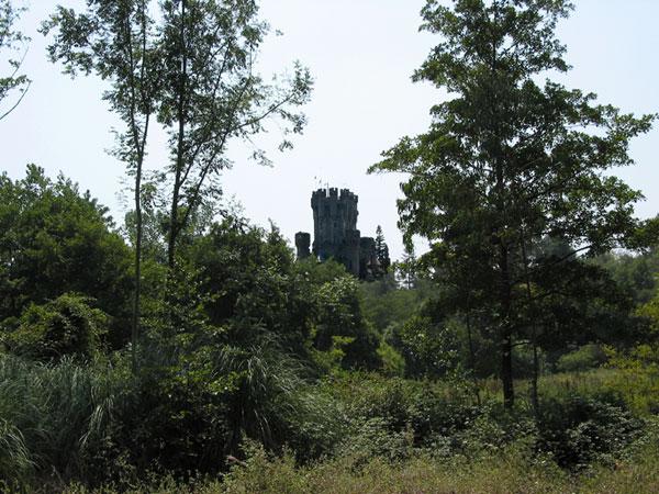 In de verte tussen de bomen: kasteel met torentjes en kantelen