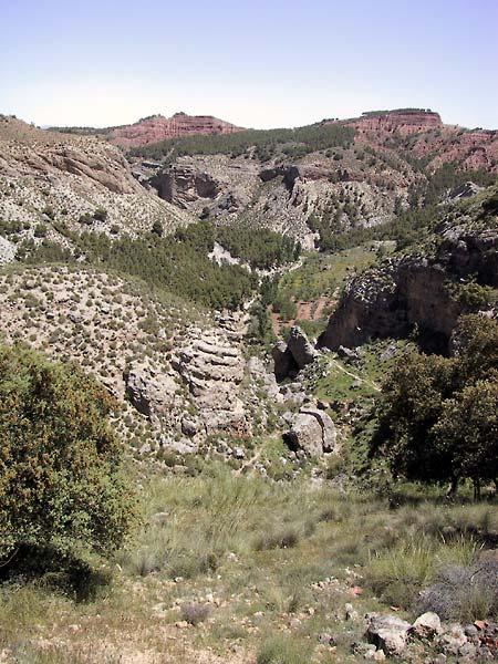 Gekleurde rotsen, olijfbomen, eeuwenoude terrassen en woeste gebieden