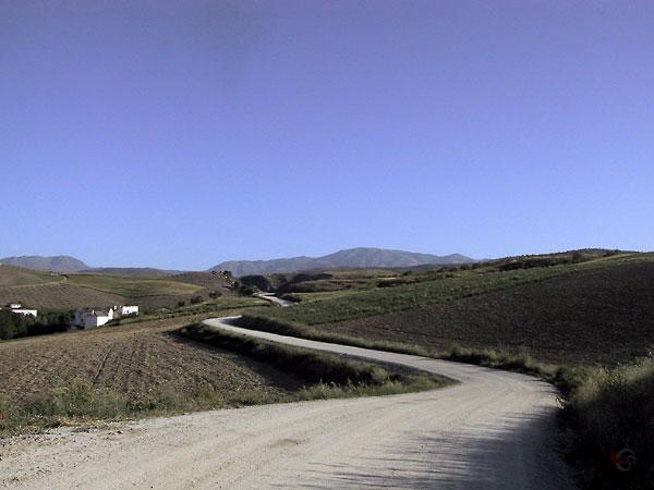 Onverhard slingerweggethe tussen geploegde akkers in heuvels