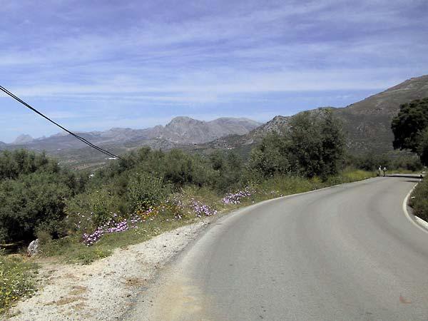 Bloemen langs de weg, uitzicht over de heuvels