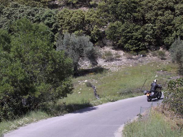 Sylvia door de bocht in heuvels met kurkeiken