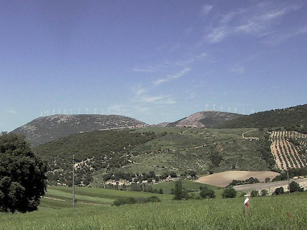 Afwisseling van grasland, olijfboomgaarden, groente en woeste grond