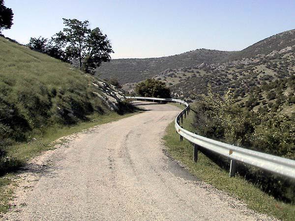 Weggetje van slecht asfalt, struikgewas en kaal