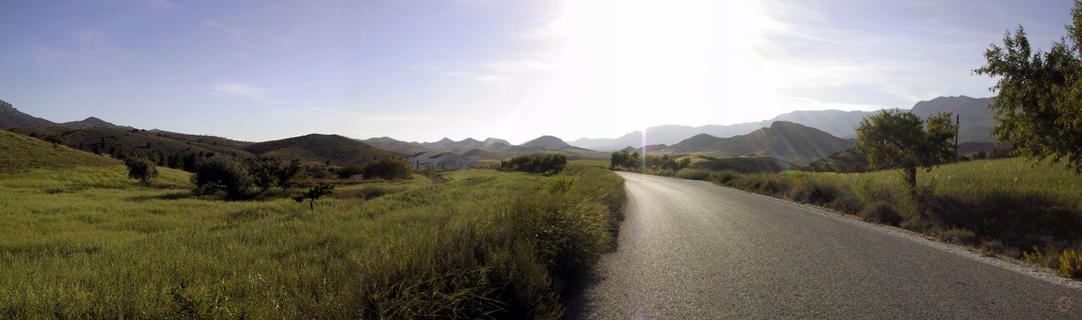 Zon op groene omgeving, lang gras, met witte boerderij