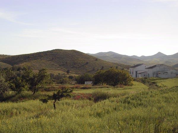 Witte boerderij in groene heuvels met rode bloemen