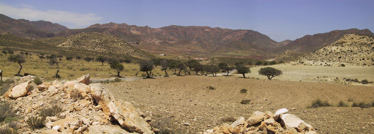 Spaarzaam begroeide gekleurde rotsen, verspreid staande bomen daartussen
