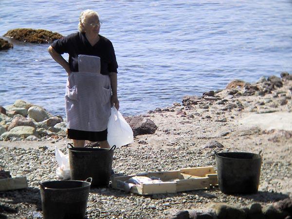 Vrouw bij de zee, naast lege emmers en bijna lege kratten