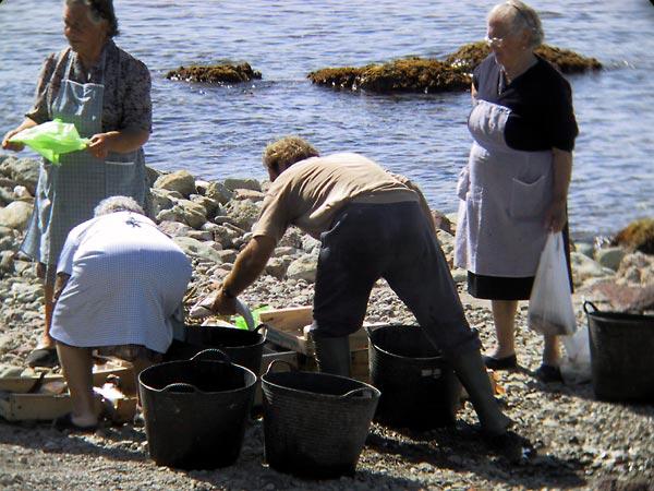 Dorpsbewoners nemen wat vis mee in plastic zakken