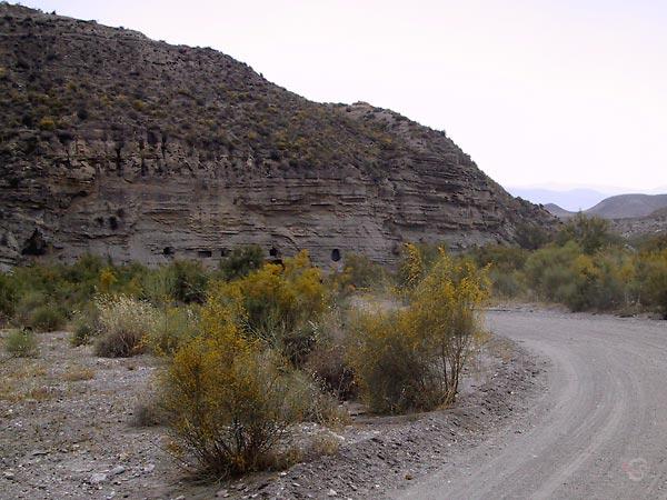 Loodrechte canyonwand met gaten, gele brem naast het pad