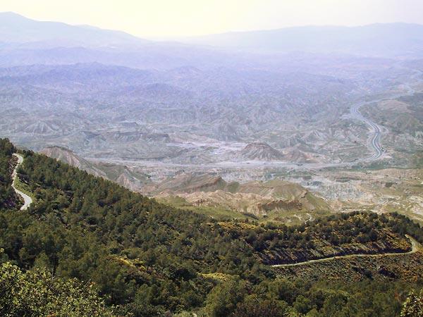 Naaldbomen op de voogrond, canyonachtige rotsformaties daarachter
