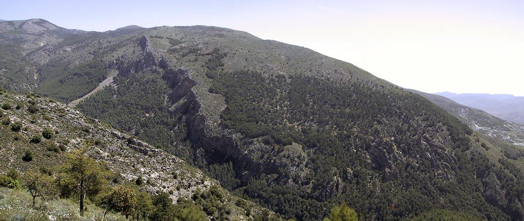Berg met struikgewas voor, berg met naaldbos en donkere richel daarachter