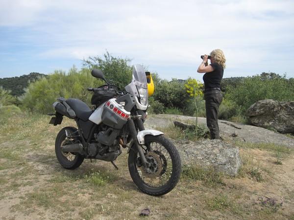 Yamaha Tenere XT660Z, op berg