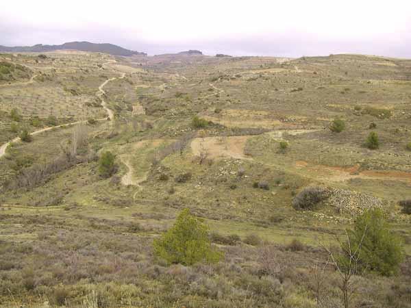 Onverhard voetpad door droog struikenlandschap