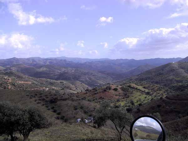 Heuvels in verschillende kleuren, met wat olijfbomen hier en daar