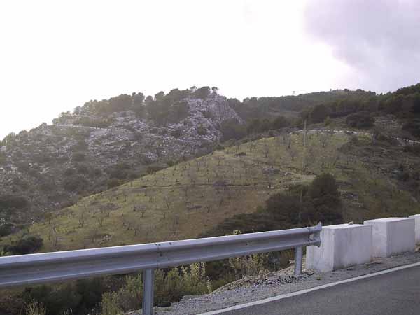 heuvels van rotsen en heuvels met boomgaarden