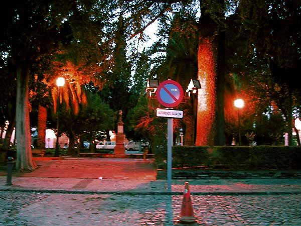 Verlicht plein met palmen