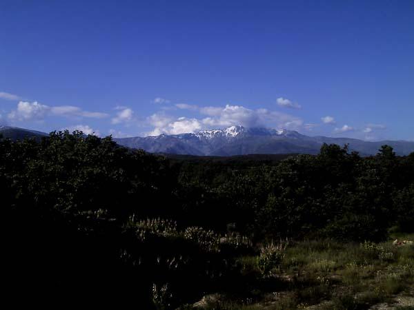 Besneeuwde bergen in de verte