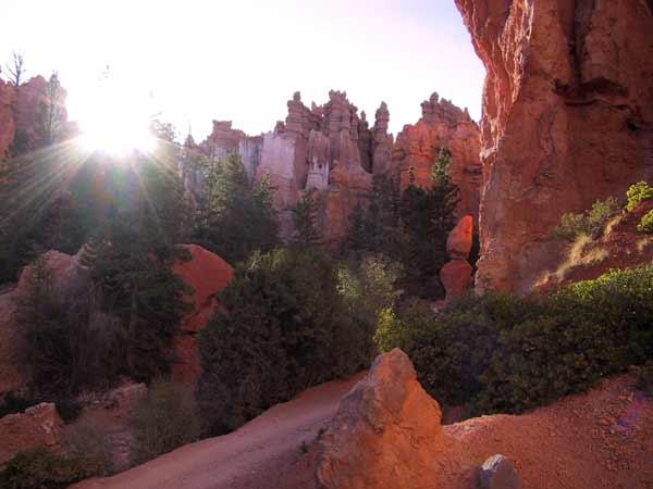 Orange sculpture-like rocks, some green trees, sun rays